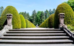 Eingangsportal Friedhof Ohlsdorf, Freitreppe mit ornamentalen Büschen